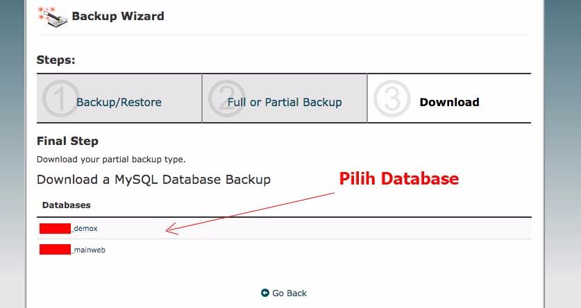 cpanel select database