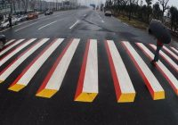 penyebrangan zebra cross 3d India 1